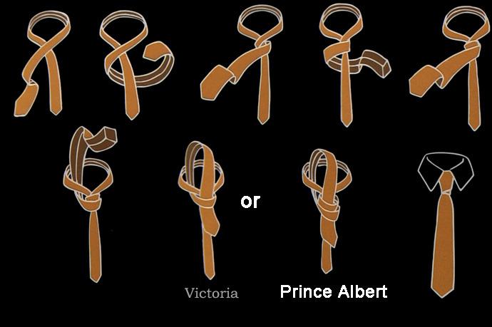 Prinz Albert&Victoria Krawattenknoten