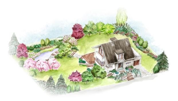 So bepflanzen Sie Ihren Traumgarten – Gartenplanung