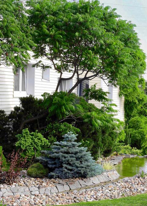 Die einzelnen Gartenteile