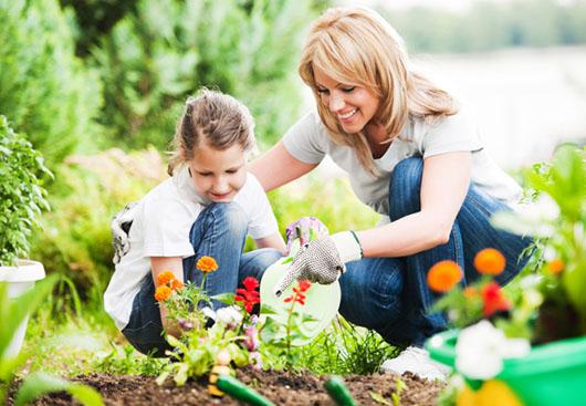 Garten und Gesundheit – Teil 2