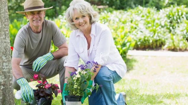 Garten und Gesundheit – Teil 1