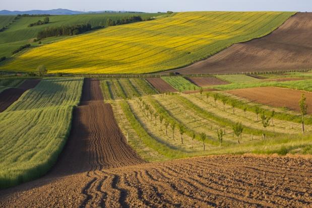 Produktive Bodennutzung